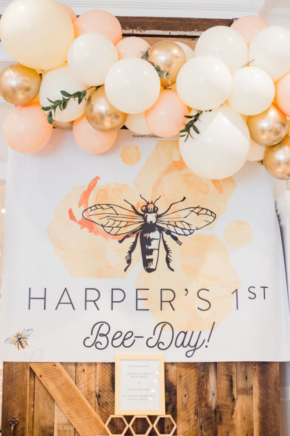 Party In A Box Honey Bee Birthday Scarlett Collection