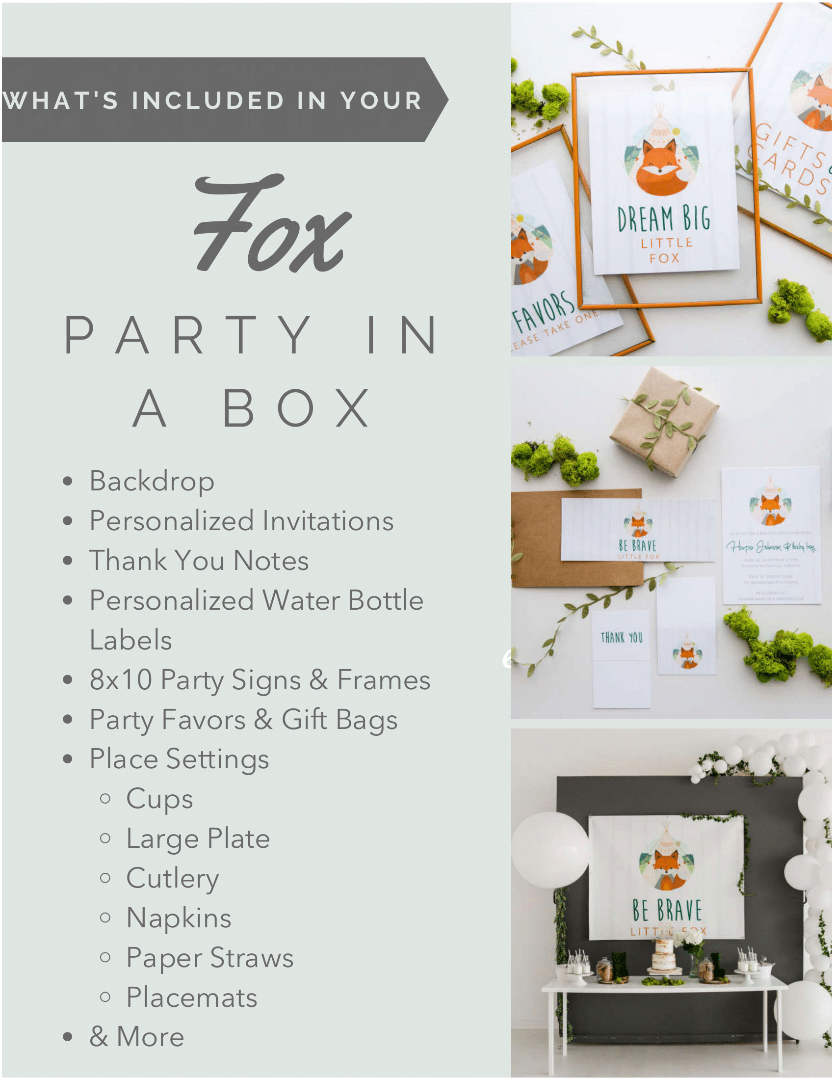 Whats Included - Fox Party